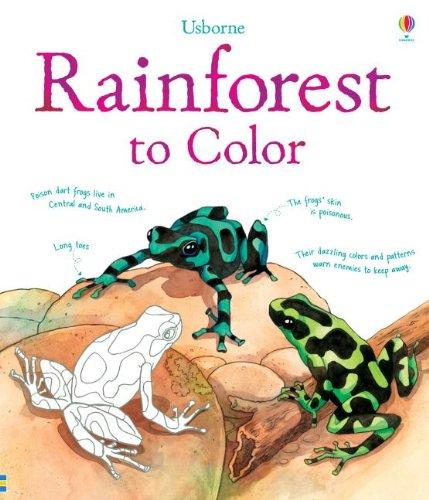 Rainforest to Color