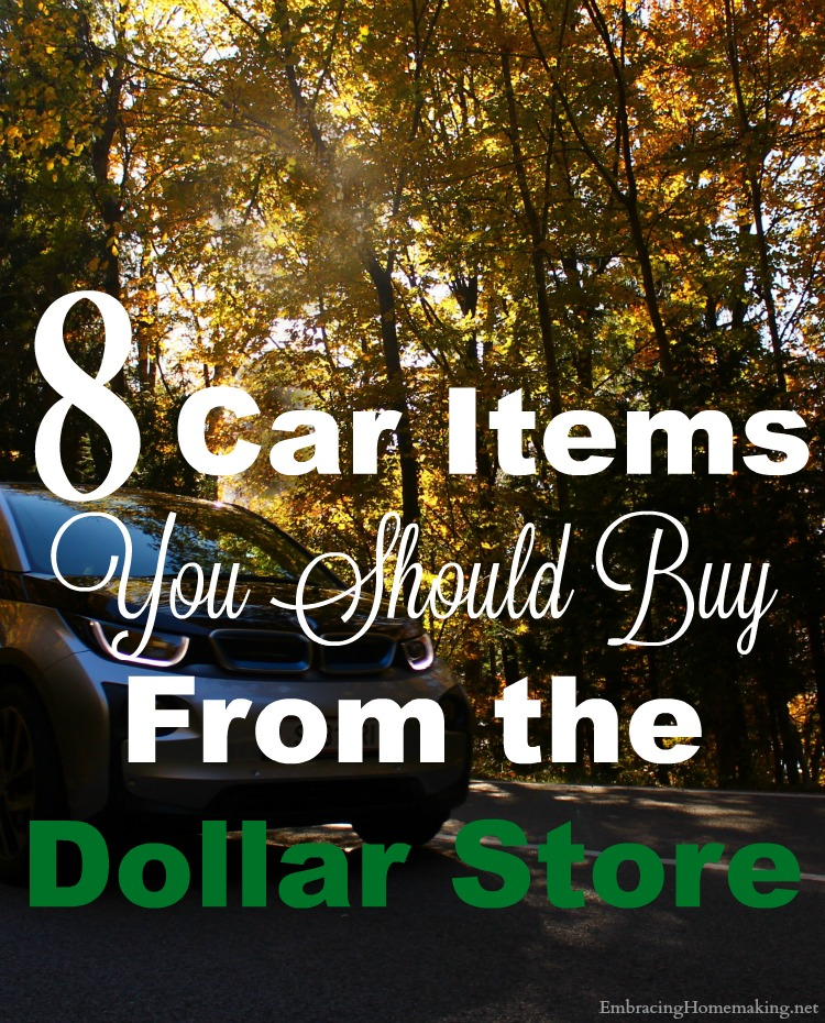 Car Care Items from The Dollar Store