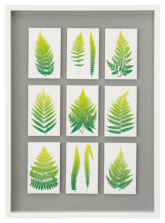 Ikea Greenery Picture