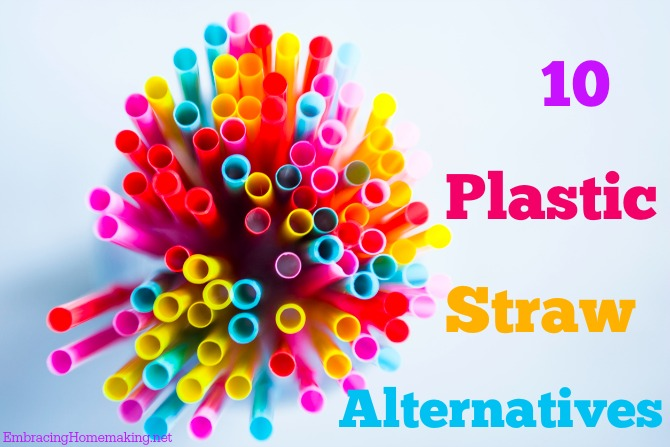 10 Plastic Straw Alternatives
